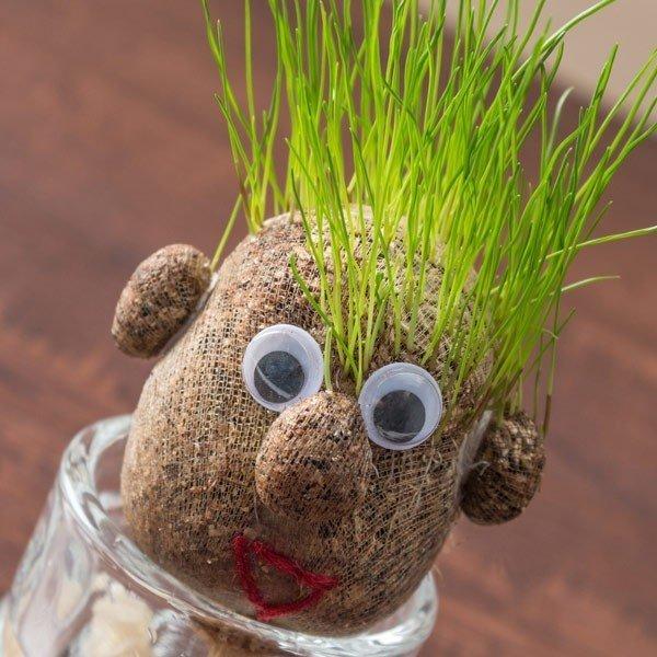 Gräshuvudet