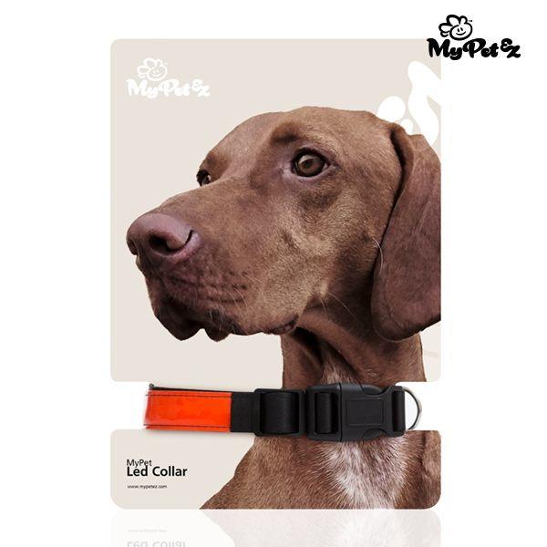 Blinkande Hundhalsband
