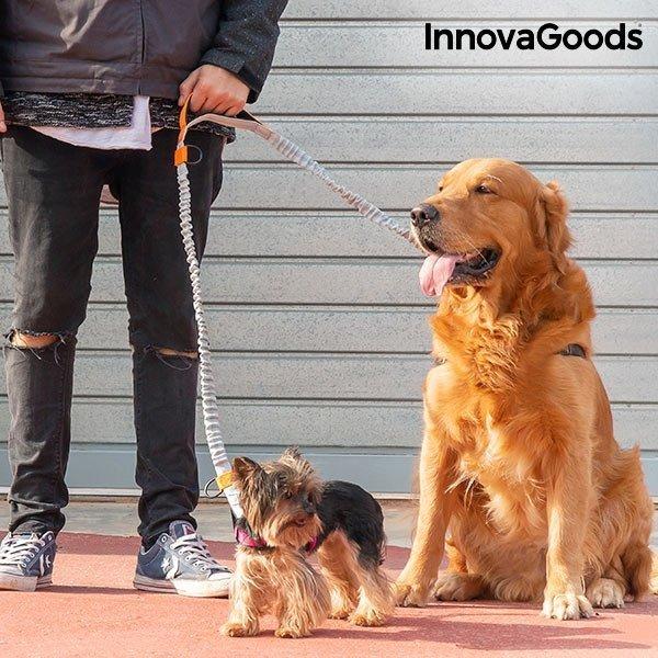 Handsfree Koppel Till Hund